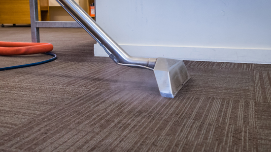 Carpet Cleaning Steam Cleaner Cleaning Carpet